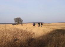 Auf der ersten Wandertour von Usedom nach Krienke